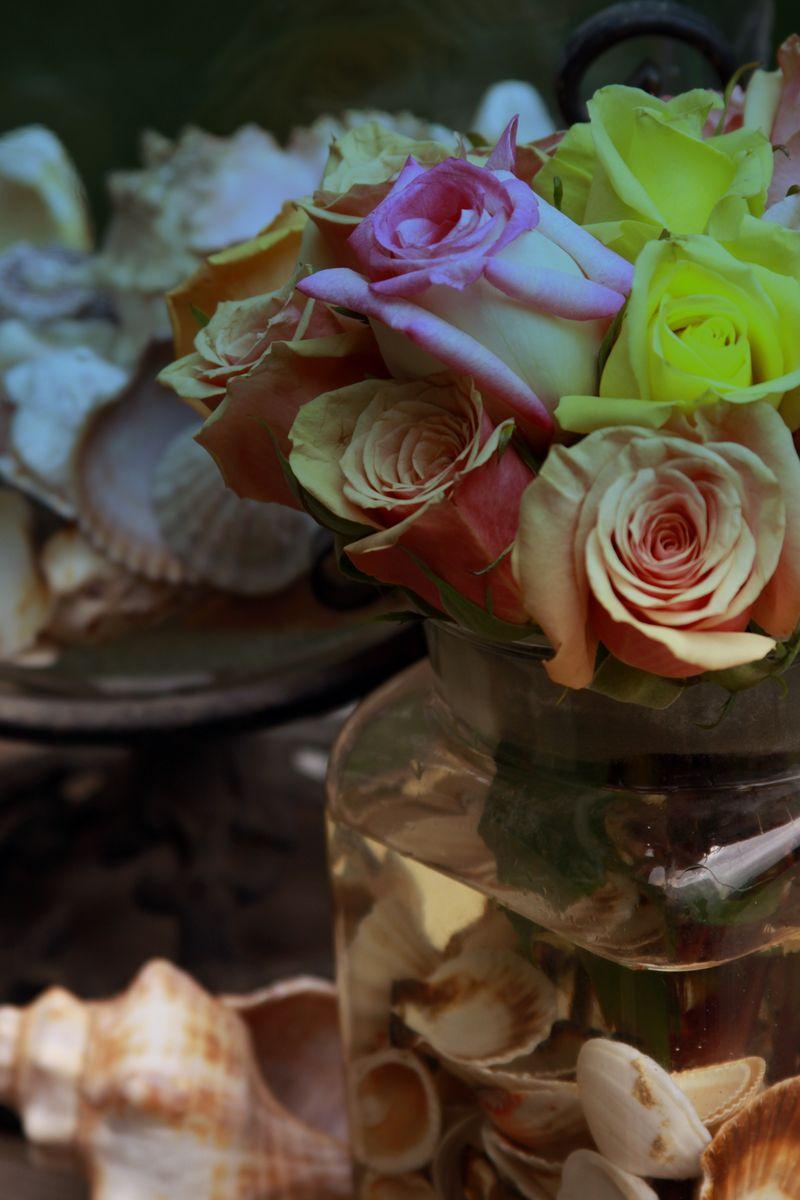 RosesandShellsTint2