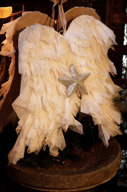 Wings_2